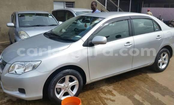 Acheter Voiture Toyota Axio Gris à Mairie en Bujumbura